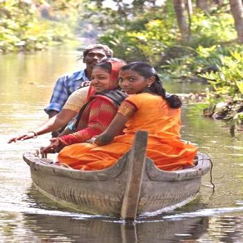 INDIA:  traveling the picturesque backwaters in Kerala -  INDIA:  traveling the picturesque backwat